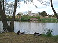 Pond at Coughton Court - geograph.org.uk - 466678.jpg