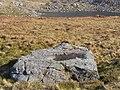 Pool in a boulder near Llyn Bochlwyd - geograph.org.uk - 162449.jpg
