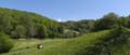 Poppenhausen Wasserkuppe Pferdskopf Gukaisee Eube Pasture Moo NE.png