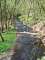 Potok Loděnice, na hranici Hostimi a Srbska.jpg