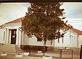 Primary school Karadjordje , Topola.jpg