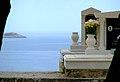Primosten - All'ombra dei cipressi e ... (vista mare) è forse il sonno della morte men duro - panoramio.jpg