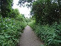 Public footpath from Green Dragon Lane, London N21 - geograph.org.uk - 826784.jpg