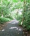 Public footpath through Eymore Wood - geograph.org.uk - 493490.jpg