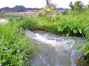 Gumti River (Tripura) - Irrigation is underway by pump-enabled extraction directly from the Gumti, seen in the background, in Comilla, Bangladesh.