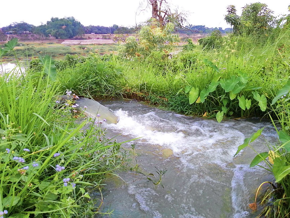 Pump-enabled Riverside Irrigation in Comilla, Bangladesh, 25 April 2014