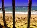 Queen's surf beach - panoramio.jpg