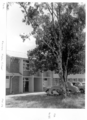 Queensland State Archives 6377 Kedron State High School Brisbane August 1959.png