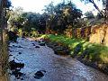 RíoBarrónNR.jpg