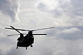 RAF Chinook Helicopter MOD 45154572.jpg