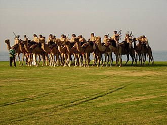 Police band (music) - ROP Camel Band