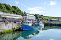 Rathlin Island Northern Ireland 07.jpg