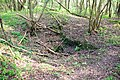 Remains of limestone mine - geograph.org.uk - 402898.jpg