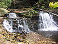 Ricketts Glen State Park Cayuga Falls 1.jpg