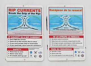 Rip current Narrow current of water which moves directly away from the shore, cutting through the lines of breaking waves