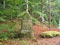 Ritterstein 216 Dunkelskehl.JPG