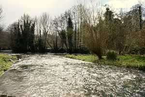 River Awbeg - Image: River Awbeg Castletownroche