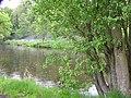 River Camowen, Omagh - geograph.org.uk - 1309149.jpg