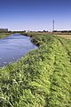 River Nene (old course) - geograph.org.uk - 663411.jpg