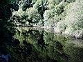 River Teifi near Llechryd - geograph.org.uk - 1381232.jpg