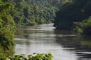 River flowing.jpg