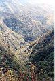 Rivière Noire (3043637380).jpg