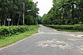 Road beside the Institute of Forestry and Environmental Sciences at University of Chittagong (05).jpg