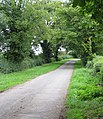Road from Knaptoft Church ruins - geograph.org.uk - 224698.jpg