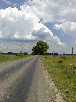 Road on travel to Krushynka in Ukraine.jpg