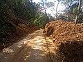 Roadside Landslip in Vazachal Forest, Anaimalai hills Roadside Landslip in Anaimalai hills IMG 20180908 143221589.jpg