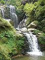 Rock Garden, Darjeeling.jpg