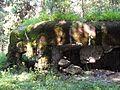 Rokytnice v Orlických horách, Panské Pole, R-S 70 (rok 2010; 05).jpg