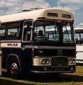 Royal Blue coach 1436 (HDV 641E), 2009 Luton Festival of Transport.jpg