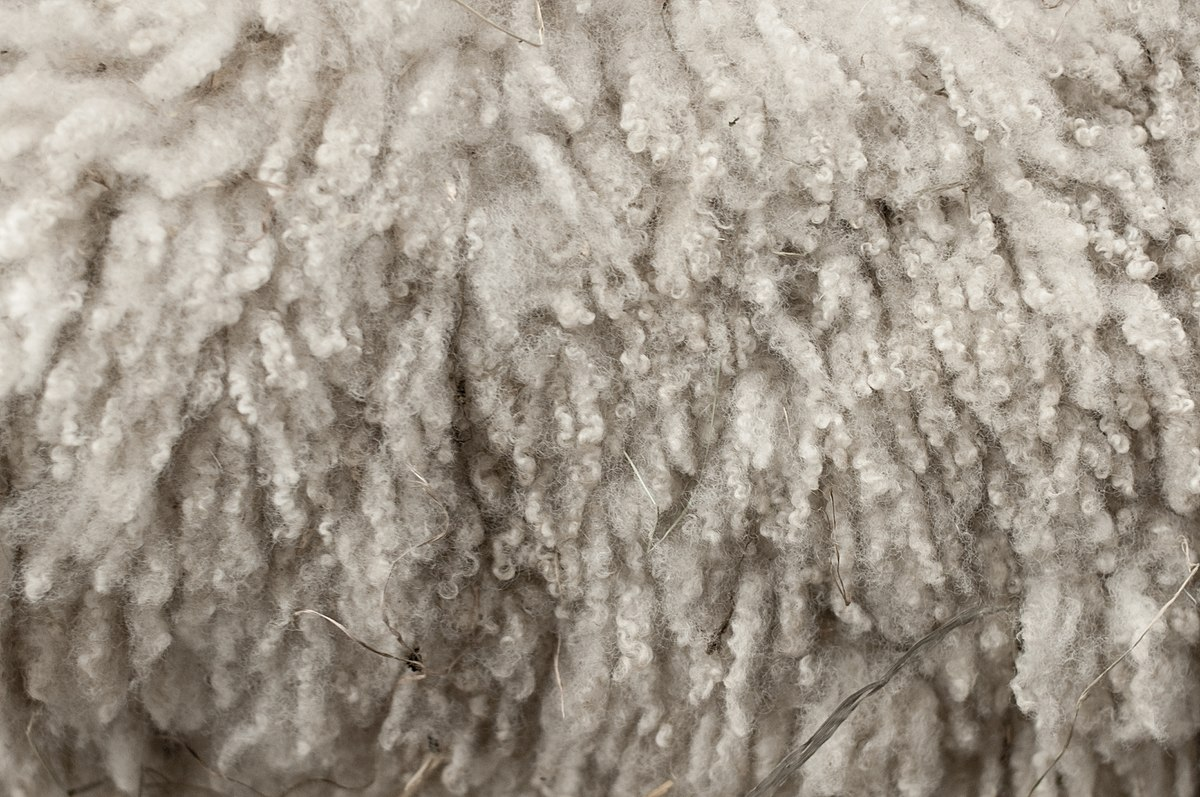 Natural Hair Cotton Texture