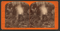 Rustic Fountain, Woodward's Gardens, San Francisco, Cal, from Robert N. Dennis collection of stereoscopic views.png