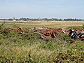 Rusting discarded metal on the MOD site at Orford Ness - geograph.org.uk - 1472282.jpg