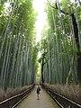 Sagaogurayama Tabuchiyamacho, Ukyo Ward, Kyoto, Kyoto Prefecture 616-8394, Japan - panoramio.jpg