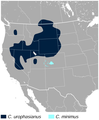 Sage and Gunnison Grouse Centrocercus urophasianus and minimus distribution map.png