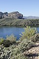 Saguaro Lake Hiking Trail, Tonto National Park, Arizona - panoramio (50).jpg