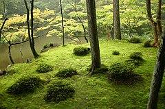 el jardn japons de saihouji kioto