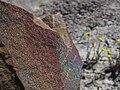 Sakhalin mud Volcano 8.jpg