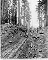 Scraper at work on a cable incline, April 21, 1903 (SPWS 636).jpg