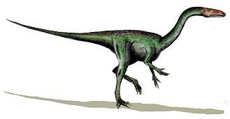 Navajo Sandstone - Segisaurus