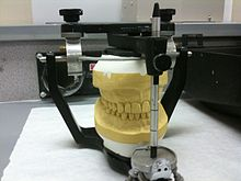 Articulator wikipedia articulator ccuart Images