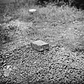 Serie Landmijnen ruimen bij Hoek van Holland. Duitse antipersoneel glasmijn (…, Bestanddeelnr 900-6491.jpg
