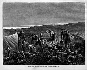 Sheep Raid Colorado 1877.jpg