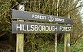 Sign, Hillsborough forest - geograph.org.uk - 1228015.jpg