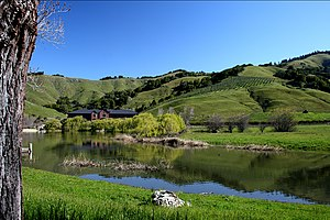 Skywalker Ranch - Skywalker Ranch Ewok Lake