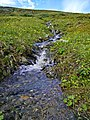 Small mountain stream - panoramio.jpg