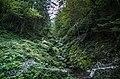 Small river - panoramio (5).jpg